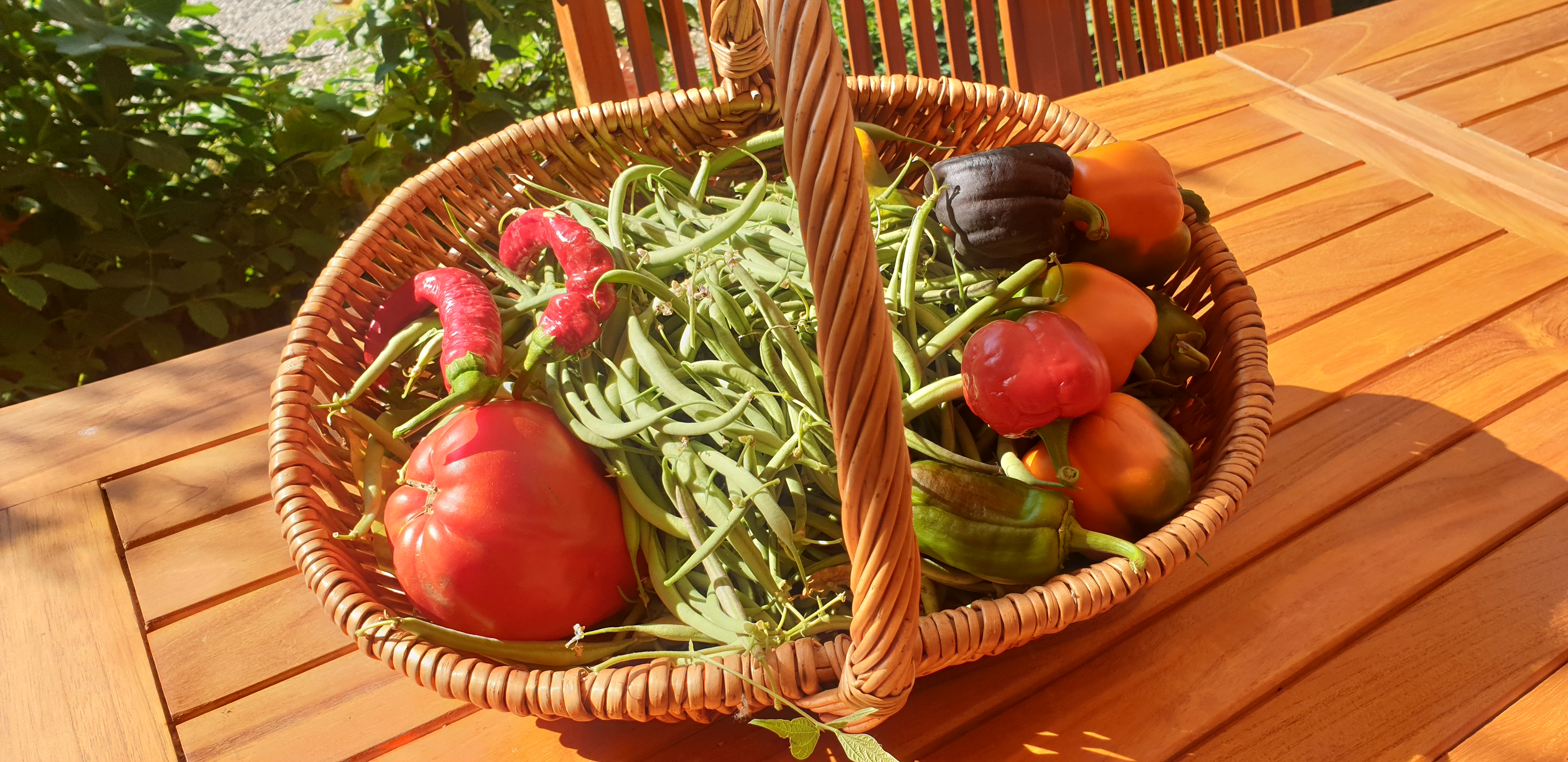 Organic and local vegetables basket